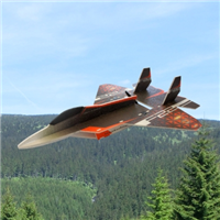 RCF FUN F-22 Raptor ARF
