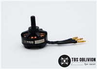 Team Blacksheep TBS Oblivion Motor (1)